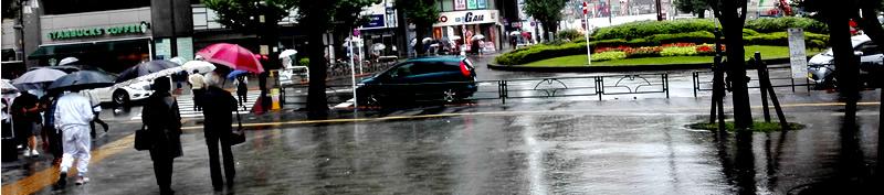 雨の日の着物事情